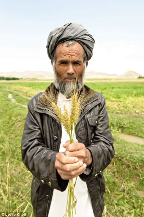 Hamidullah: Afghanaid¿s volunteers and experts have built roads and schools, developed agriculture and rural businesses