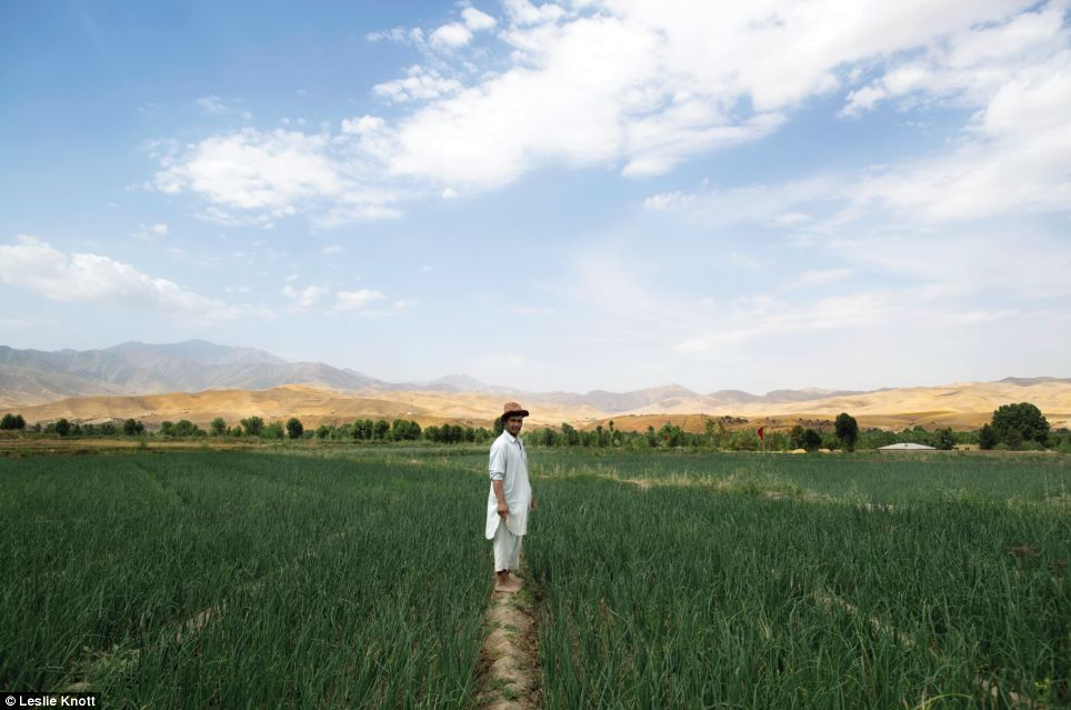 Portrait: Mohammad Asif is pictured standing in a field with the Afghan landscape behind him
