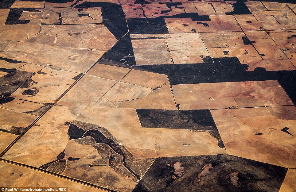 Fields resemble crazy marble paving from the skies over Australia. Mr Williams took this picture somewhere between Alice Springs and Perth