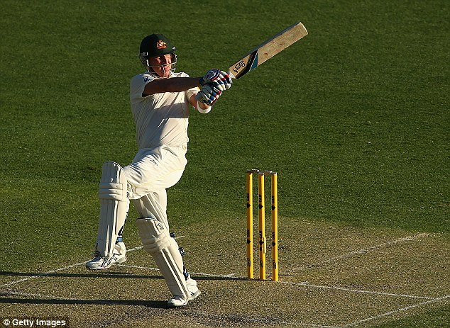 Strike a pose: Australia were revived by the partnership of Mitchell Johnson and Brad Haddin (above)