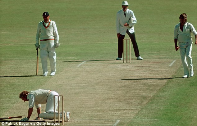 Balls to that! Bumble hits the deck after being hit by a very fast one from Thomson