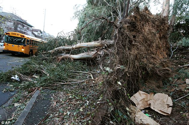 Deaths: Three people were killed in Northern California as high winds battered the region and caused major power outages, and fallen trees and branches