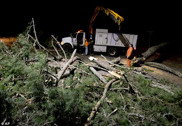 Powerful weather: High winds across the West battered the region and caused major power outages, and fallen trees and branches