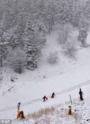 Jared Lesshana, bottom left, and Cody Handden, both from Azusa Pacific University in Azusa, hike up Mountain High Resort to get more speed on their sleds in Wrightwood, Calif, on Friday, Nov 22, 2013