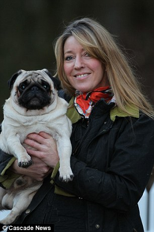 Indulgent: Julia, who runs a doggy B&B, says that pugs expect to be given a life of luxury