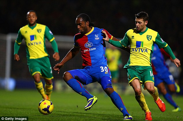 Norfolk misery: Palace striker Cameron Jerome, seen here being challenged by Norwich's Wesley Hoolahan, could not prevent his side losing 1-0