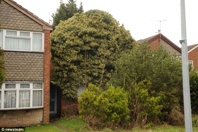 The family were able to access the house, with the front door visible underneath the foliage