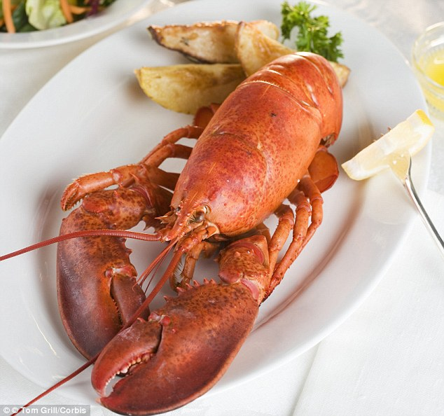 Traditionally the most luxurious of festive foods, lobster is now being sold for the price of a turkey joint