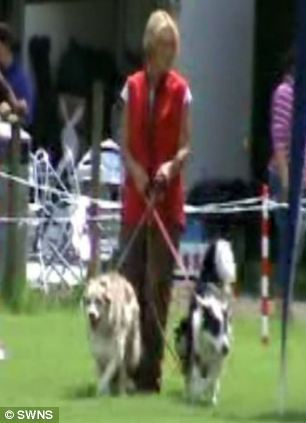 Pensioner Sylvia Wootton claimed to be unable to walk but was filmed training four dogs
