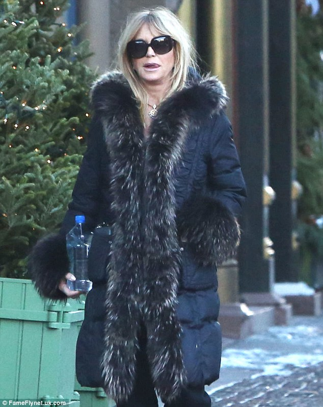 Winter wear: Goldie, 68, look chic in a thick black coat, complete with fur hood and cuffs
