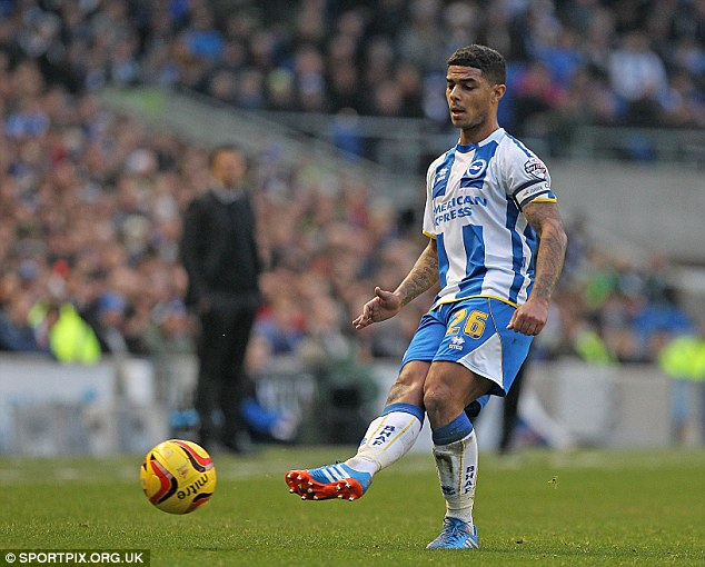 Star turn: Liam Bridcutt is a fans favourite at the Amex after some dazzling displays