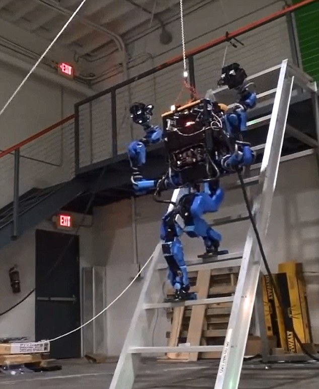 'Anything you can do, humans!': Japanese robot Schaft completes one of the eight DARPA challenges - climbing a steep ladder
