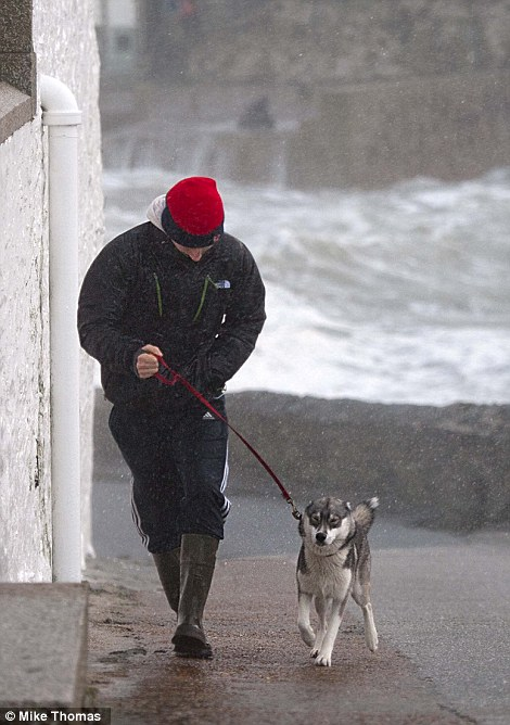 A dog walker braves the wind and spray in Porthleven, Cornwall