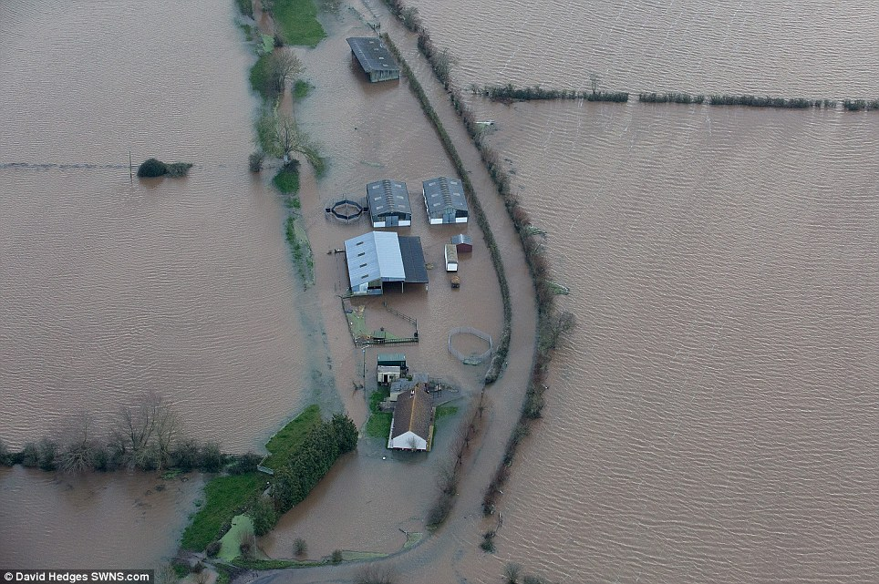 No way in or out: The Somerset village of Muchelney, which lies in between Taunton and Yeovil, has been cut off for four days after the roads flooded