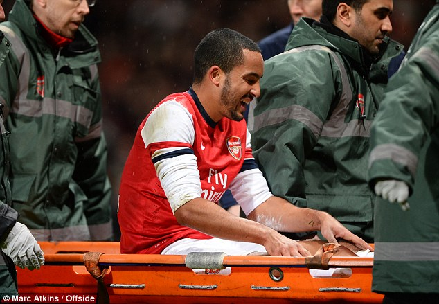 Agony: Walcott is shown clutching his left knee, and it is now revealed he ruptured his cruciate ligaments