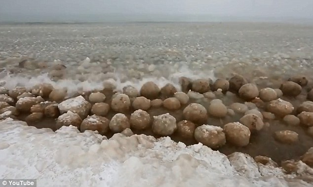 Wow: Hundreds of beach ball-sized ice boulders washed up on the shores of Lake Michigan this week