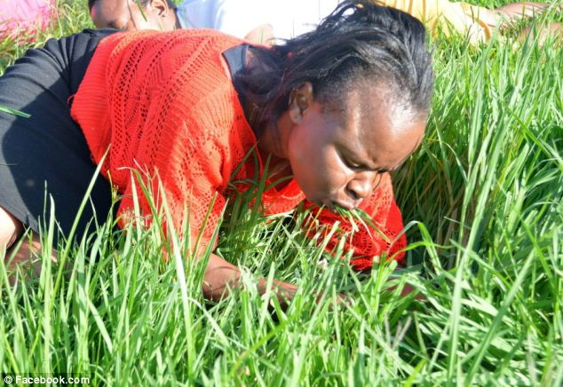 The congregation were told eating the grass will 'bring them closer to God'