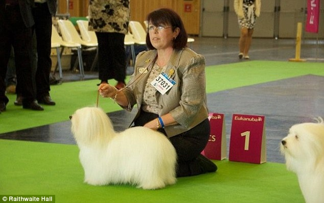 In charge: Hazel Gill, a Crufts champion, has been hired to run the spa which opens on the 17th January