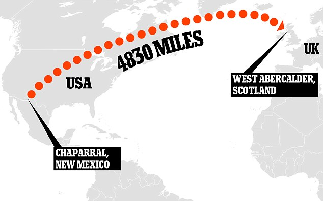 Route: The animals were flown almost 5,000 miles from Chaparral in New Mexico to West Abercalder in Scotland