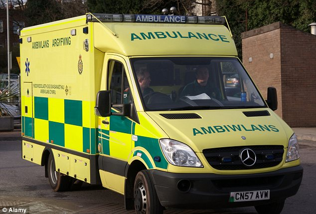 Tragic: The man was forced to remain in the ambulance because A&E was too busy for him (file photo)