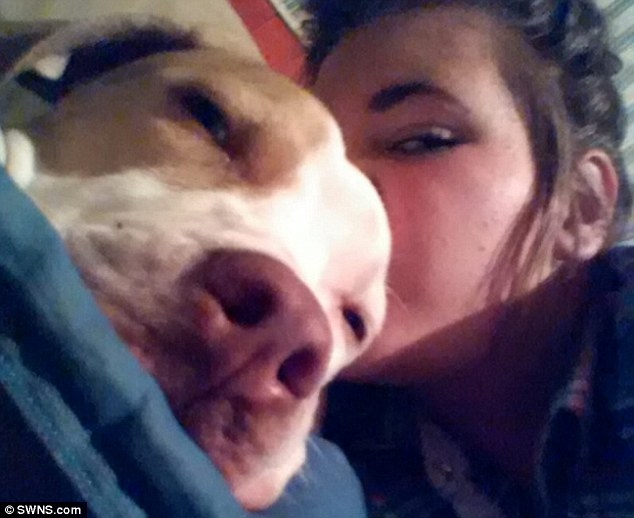 Shannon-Marie said: 'I can't believe the police have shot my puppy. He was a playful, loving puppy. He was my world'