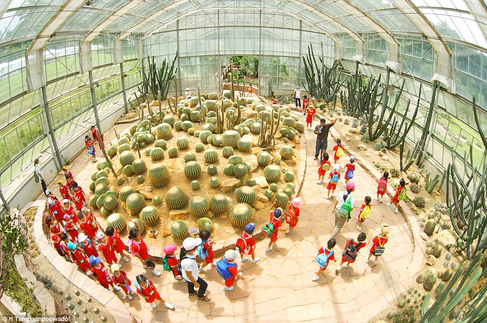 Education: The People category was won by this shot, titled Learning Of Nature, showing children being led around a greenhouse using a fishbowl camera lens