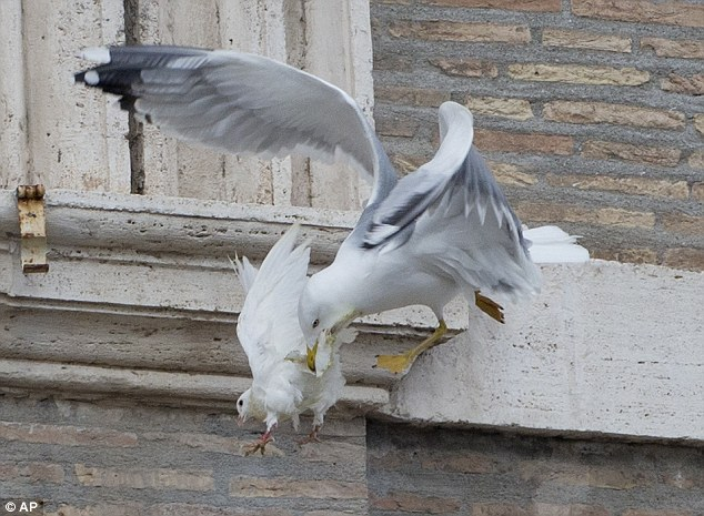 Attack: Two white doves had been sent fluttering into the air as a peace gesture by Italian children