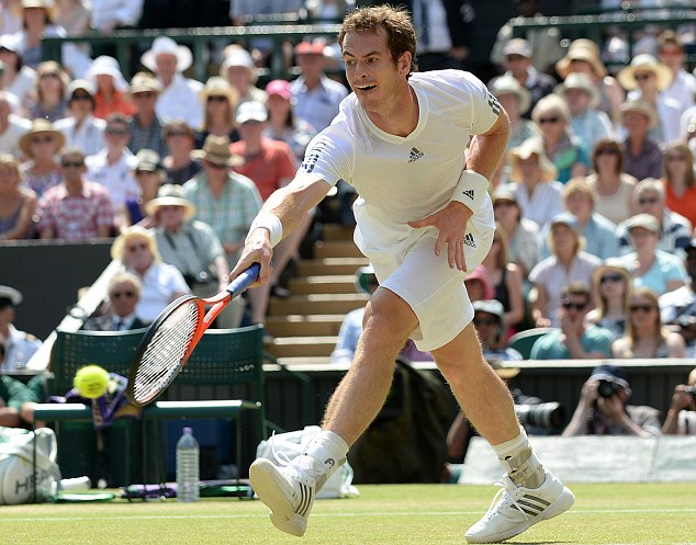 Not just yet: Murray in action during last year's Wimbledon final against Novak Djokovic