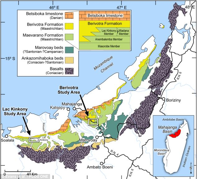Researchers collected frog fossil fragments in the Mahajanga Basin in Madagasca. The majority of specimens of Beelzebufo were discovered in the green sections shown on this map
