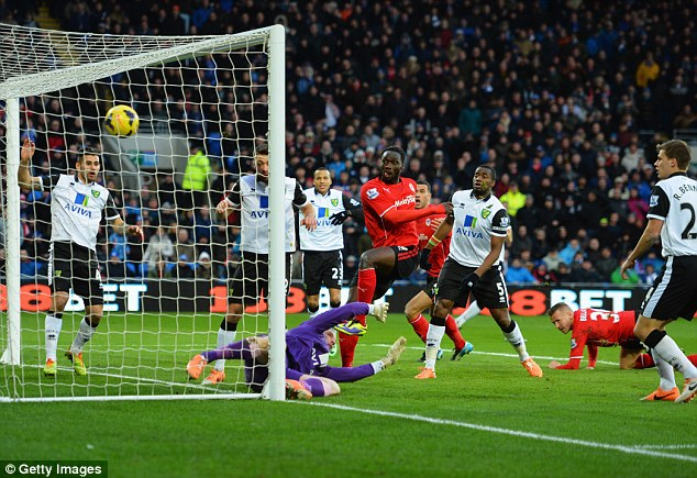 Take a bow: Kenwyne Jones scored on his debut for Cardiff after completing a move from Stoke