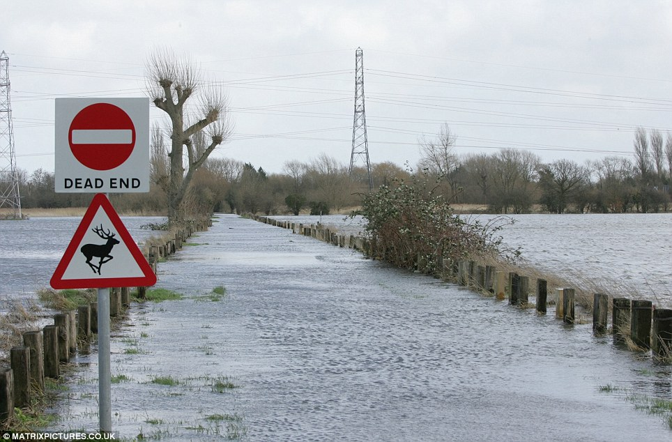 A large section of the River Thames, stretching from Staines to Chertsey, burst its banks and flooded the road