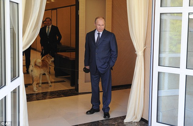Welcome: Putin's dog could be seen roaming inside the Bocharov Ruchei residence in Sochi as he waited