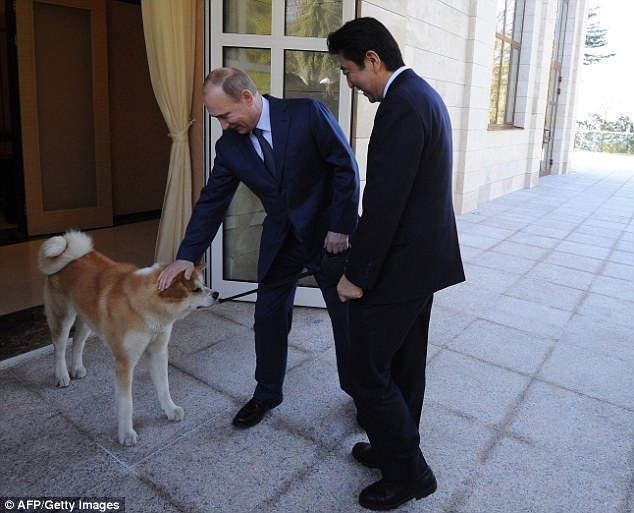 Who's top dog now? Yume appears a little grumpy as the Russian president gives her a pat on the head