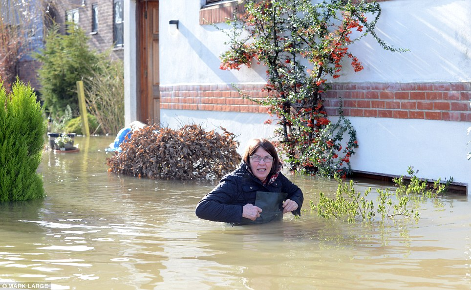 Deep: Tricia Tompkins in chest-high waders walks down the garden path on Friary Island in Wraysbury