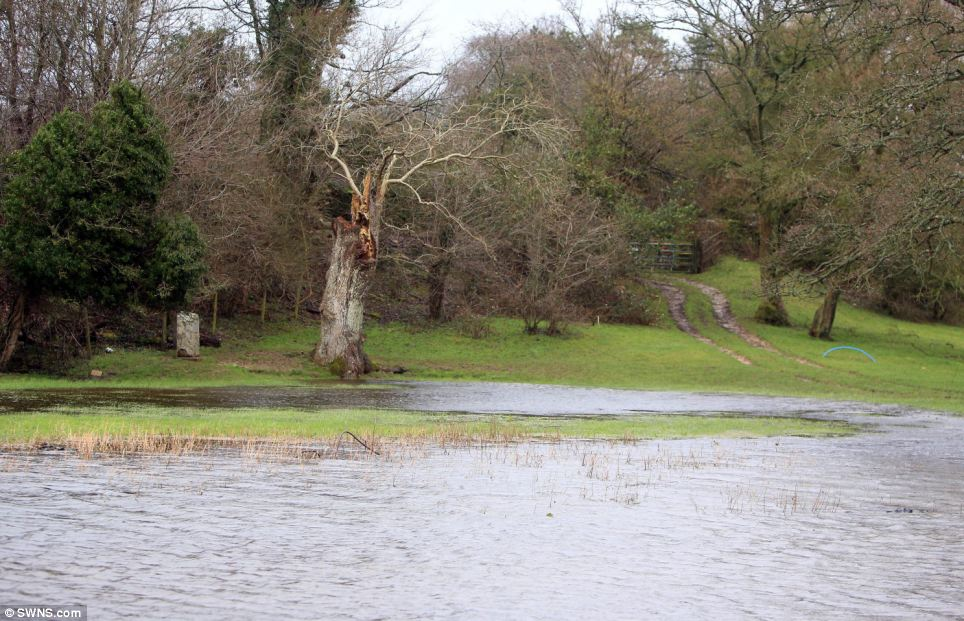 This flooded field is a common sight in southern England. Around 1,000 homes have been evacuated and more than 5,000 properties flooded as the deluge sweeps across Britain