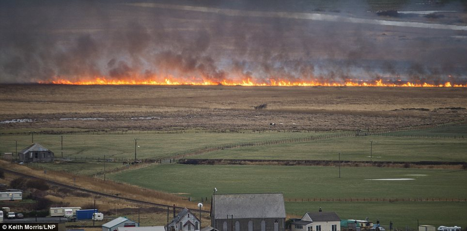 Flames: A line of fire could be seen this morning after the power lines ignited the highly flammable peat bog
