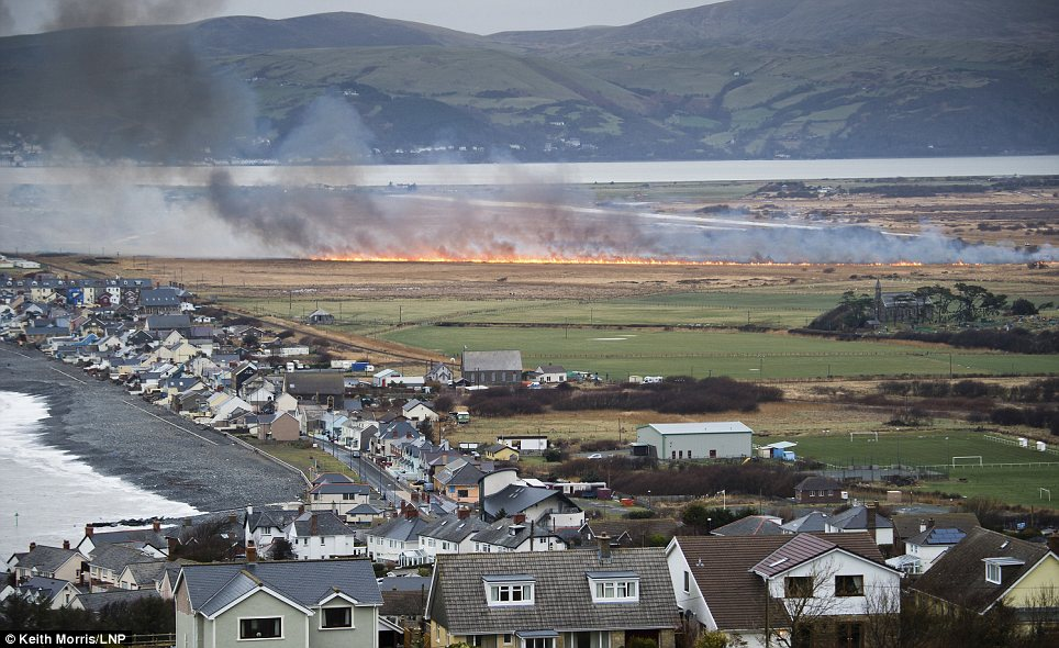 Blaze: Large parts of Borth Bog on the west coast of Wales are on fire after high-voltage power lines collapsed overnight