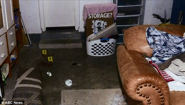 Hidden: Francis said the gun was stashed in this garage and claimed it was not loaded