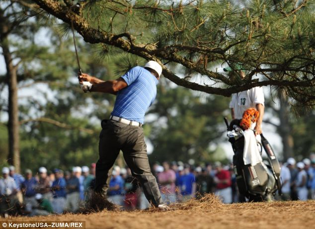Tiger Woods spins as he hit his ball under the Eisenhower tree on the 17th hole in 2011