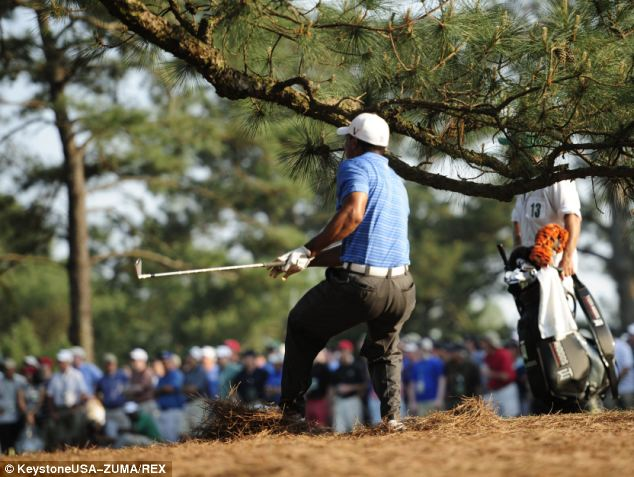 Players either had to hit over the 65-foot tree to keep the ball in the fairway, or try to shape the ball from right-to-left to avoid it