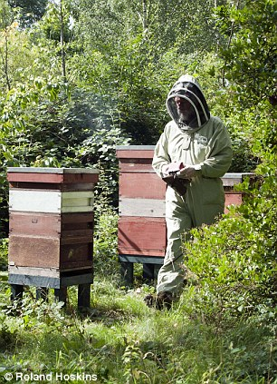 UK honeybees and bumblebees have long been a vital resource to the food production industry, as they help with the pollination of various fruits and vegetables