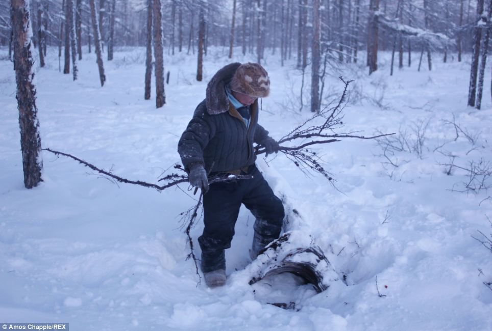 Setting up camp: When Vladimir is forced to sleep outside he will first locate a dead tree trunk which he will set his fire against before piling the wood high to create a large blaze