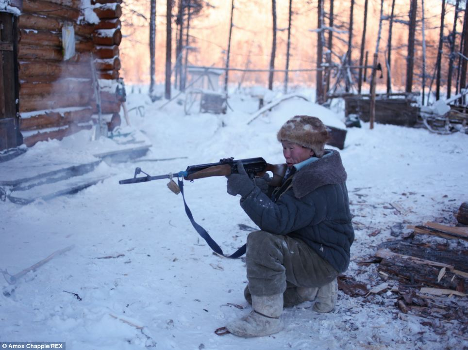 Protection: Vladimir's reindeer remain half wild and when the herd decides to move out into the taiga he has little choice but to don his soviet rifle - used as protection against wolves - and follow