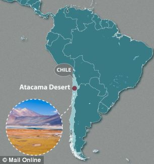 The fossils were uncovered in the Atacama Desert, next to the Pan-American Highway in Chile