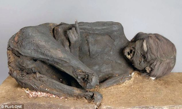 Evidence of a brutal murder has been found after forensic analysis of 1,600 year-old mummy discovered in South America's Atacama Desert