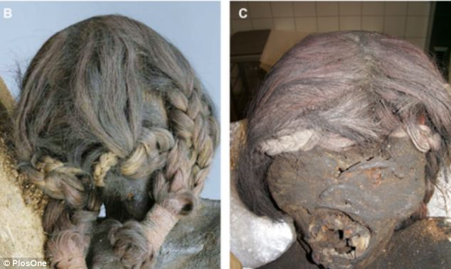 Forensic analysis on the mummy's hair suggested she likely had a diet high of seafood and maize. The left image shows the external appearance of the hair plaits which are fixed at their ends by tiny ropes of foreign material. On the right is the detailed view of the mummy's face