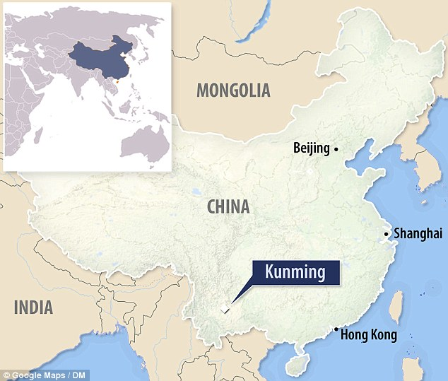 Major city: The attack was at the main railway station for Kunming in south west China, the capital of Yunnan province which has more than six million inhabitants. It handles up to 75,000 passengers a day