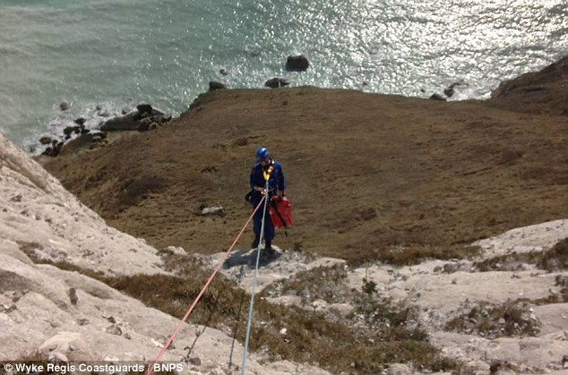 Coming to help: Tony Goss, a coastguard for Wyke Regis, is lowered down to rescue Marley after the fall