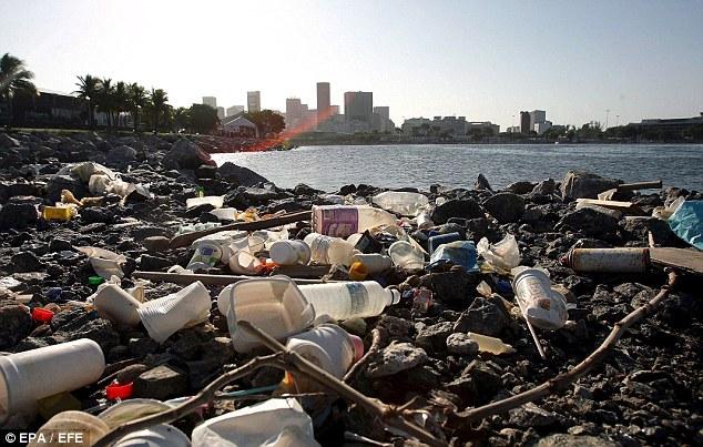 Rubbish: Despite their best efforts, Rio de Janeiro still has a big problem with refuse around the city