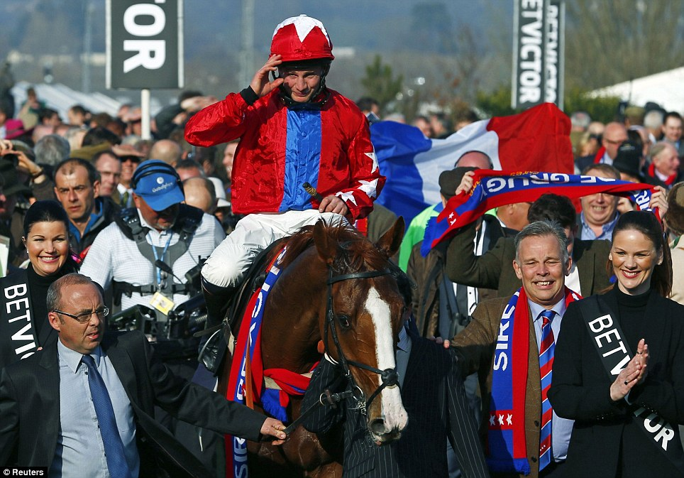 Top of the class: Chestnut thoroughbred Sire De Grugy ambles into the winner's enclosure after triumphing in the Queen Mother Champion Steeplechase